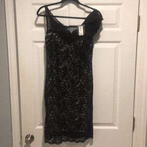 The Limited Lace Cocktail Dress - NWT